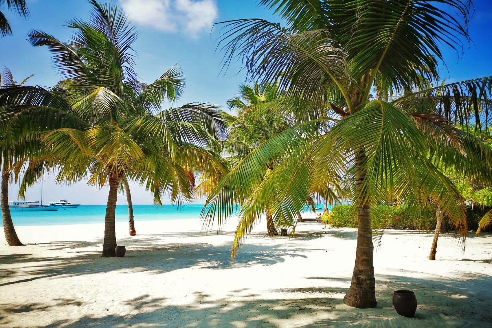 Sejur plaja Maldive, 10 zile - mai 2021
