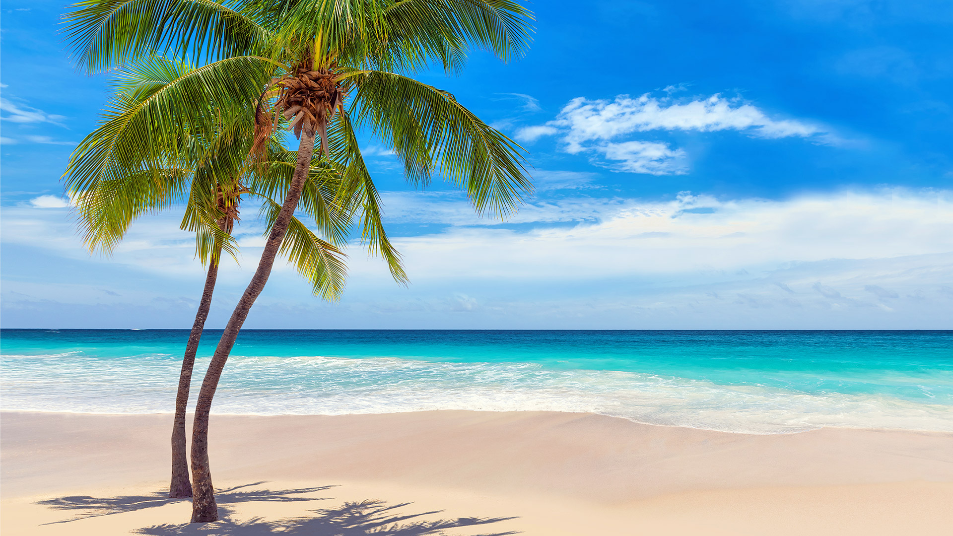 Sejur plaja Punta Cana, Republica Dominicana, 9 zile - 26 iunie 2021