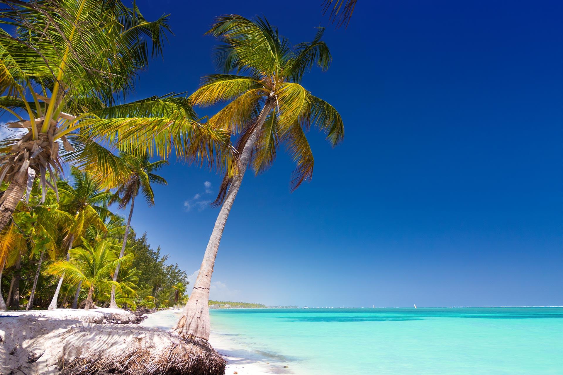 Sejur plaja Punta Cana, Republica Dominicana, 9 zile - 5 iulie 2021